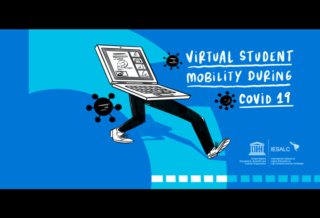 About virtual student mobility in higher education
